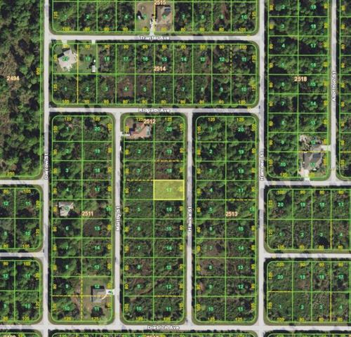 125 Hawke Street, Port Charlotte, FL 33953 (MLS #D6104642) :: Homepride Realty Services