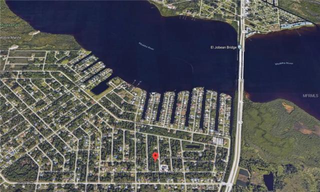 14047 Fillmore Ave, Port Charlotte, FL 33981 (MLS #D6104668) :: The BRC Group, LLC