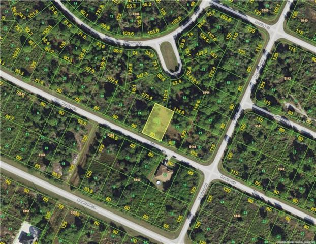 13200 Rouding Circle, Port Charlotte, FL 33981 (MLS #D6105015) :: Zarghami Group