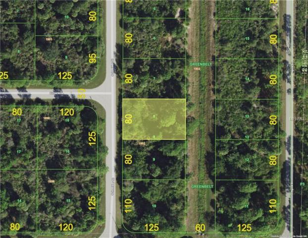 4412 Schneider Street, Port Charlotte, FL 33981 (MLS #D6105195) :: Zarghami Group