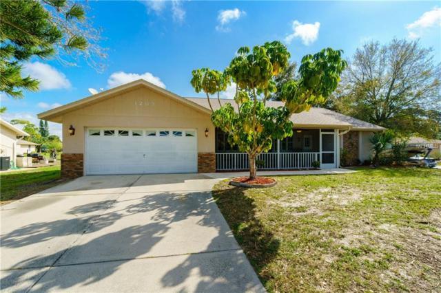 1289 Drury Lane, Englewood, FL 34224 (MLS #D6105272) :: Griffin Group