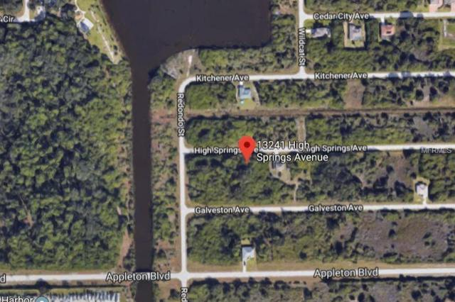 13241 High Springs Avenue, Port Charlotte, FL 33981 (MLS #D6105279) :: Zarghami Group