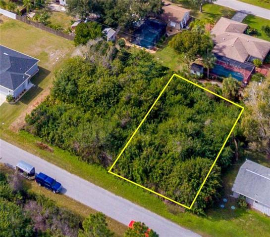 Clearwater, Englewood, FL 34224 (MLS #D6105472) :: The Duncan Duo Team