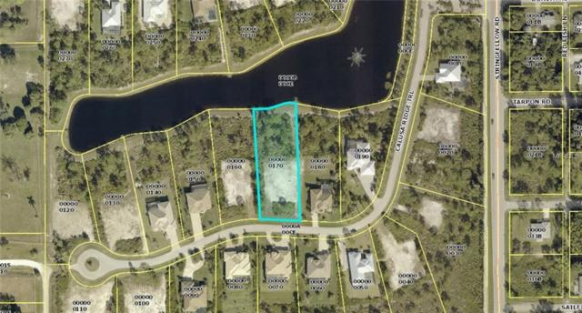 6125 Calusa Ridge Trail, Bokeelia, FL 33922 (MLS #D6105518) :: Heckler Realty