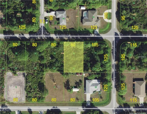 12375 Perrine Avenue, Port Charlotte, FL 33981 (MLS #D6105558) :: Bustamante Real Estate