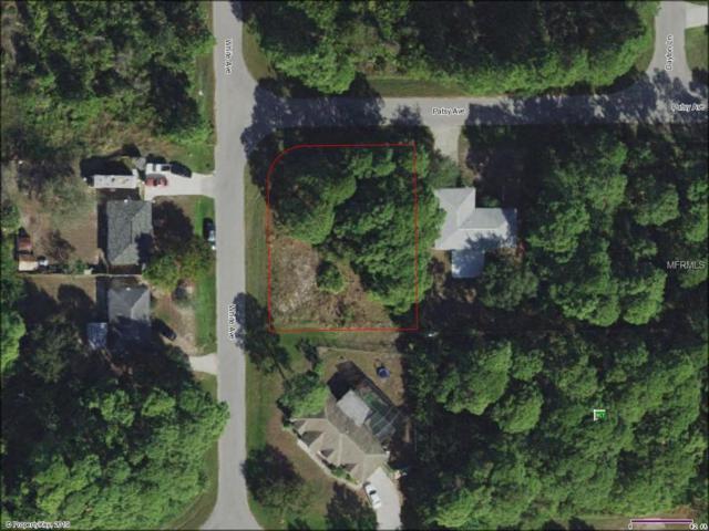 12461 Patsy Avenue, Port Charlotte, FL 33981 (MLS #D6105735) :: Bustamante Real Estate