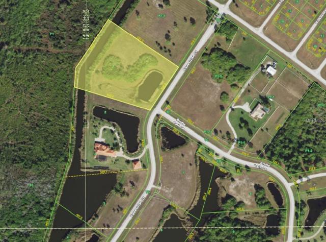 11481 Equestrian Court, Placida, FL 33946 (MLS #D6105881) :: The BRC Group, LLC