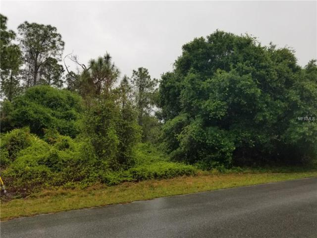 Bathfeld Road, North Port, FL 34291 (MLS #D6105923) :: GO Realty