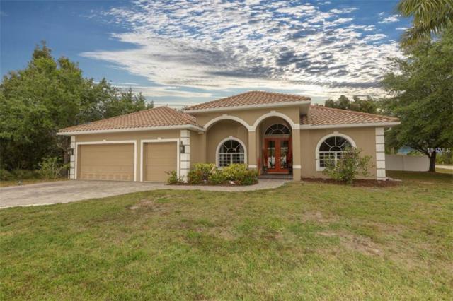 13592 Boatbill Lane, Port Charlotte, FL 33981 (MLS #D6106324) :: Medway Realty