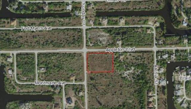 10332 Sunday Drive, Port Charlotte, FL 33981 (MLS #D6106494) :: Baird Realty Group