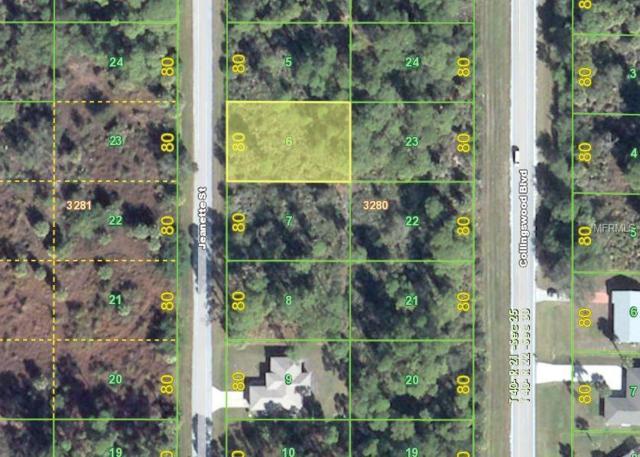 4082 Jeanette Street, Port Charlotte, FL 33948 (MLS #D6106588) :: Premium Properties Real Estate Services