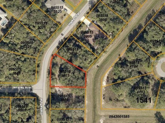 Halkett Terrace, North Port, FL 34286 (MLS #D6106641) :: The Duncan Duo Team