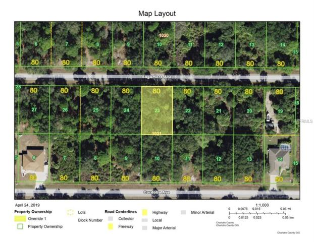 18401 Sagamore Avenue, Port Charlotte, FL 33954 (MLS #D6106688) :: Gate Arty & the Group - Keller Williams Realty