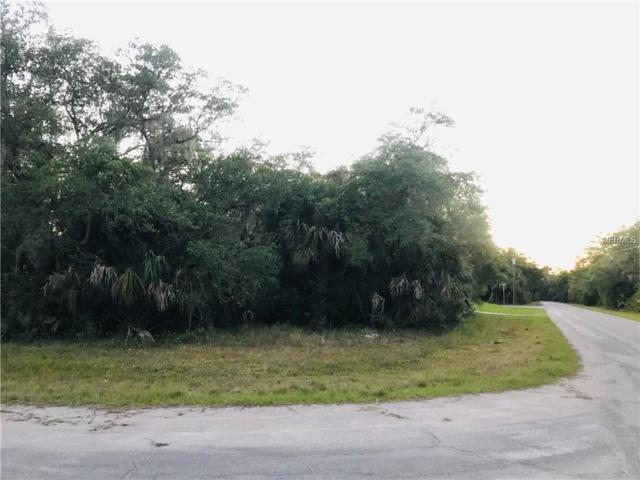 175 Orama Street, Port Charlotte, FL 33953 (MLS #D6106692) :: Team Bohannon Keller Williams, Tampa Properties