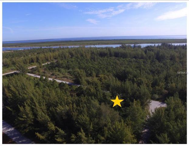 10559 Kearsarge Circle, Port Charlotte, FL 33981 (MLS #D6106952) :: Griffin Group