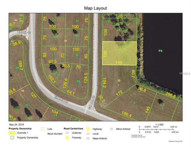 13020 Cabezon Drive, Placida, FL 33946 (MLS #D6107128) :: The BRC Group, LLC