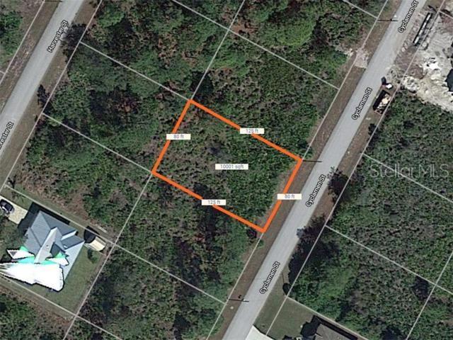 Address Not Published, Port Charlotte, FL 33981 (MLS #D6107262) :: Premium Properties Real Estate Services