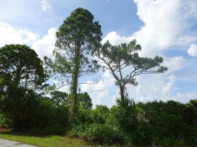 12242 Wagner Lane, Port Charlotte, FL 33981 (MLS #D6107347) :: The Duncan Duo Team