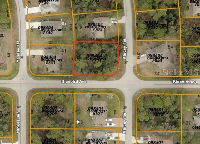 Mincey Terrace, North Port, FL 34286 (MLS #D6107465) :: The Duncan Duo Team