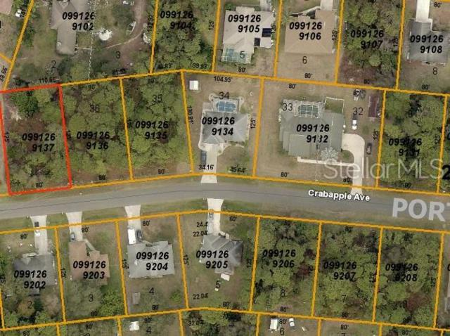 Crabapple Avenue, North Port, FL 34287 (MLS #D6107486) :: Mark and Joni Coulter | Better Homes and Gardens