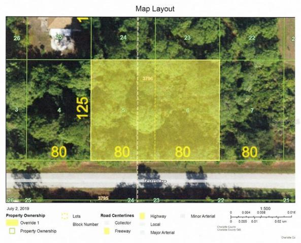 11998 Tetzel Avenue, Port Charlotte, FL 33981 (MLS #D6107605) :: Godwin Realty Group