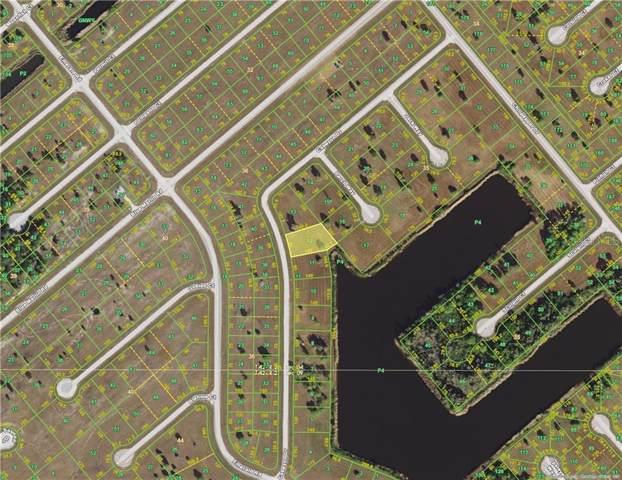 12522 Cabezon Drive, Placida, FL 33946 (MLS #D6107769) :: The BRC Group, LLC