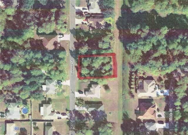 Trianna Street, North Port, FL 34291 (MLS #D6107854) :: Cartwright Realty