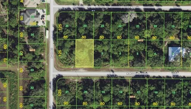 13156 Kakapo Avenue, Port Charlotte, FL 33981 (MLS #D6107969) :: Mark and Joni Coulter | Better Homes and Gardens