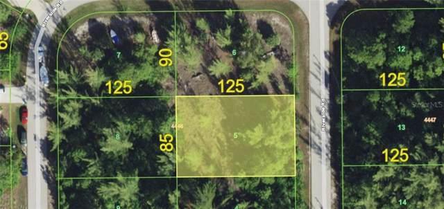 10435 Riverside Road, Port Charlotte, FL 33981 (MLS #D6108219) :: Rabell Realty Group
