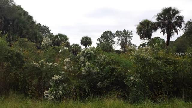 Azure Road, North Port, FL 34286 (MLS #D6108505) :: Griffin Group