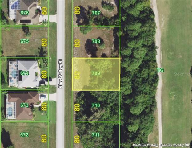57 Pine Valley (Lot 709) Place, Rotonda West, FL 33947 (MLS #D6108610) :: Team Borham at Keller Williams Realty