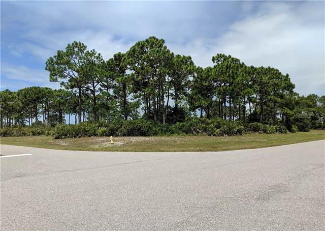 14 Ships Lane, Placida, FL 33946 (MLS #D6108672) :: Lovitch Realty Group, LLC