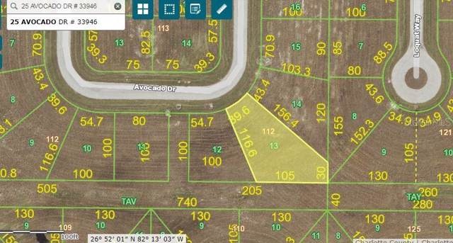 25 Avocado Drive, Placida, FL 33946 (MLS #D6108781) :: Bridge Realty Group