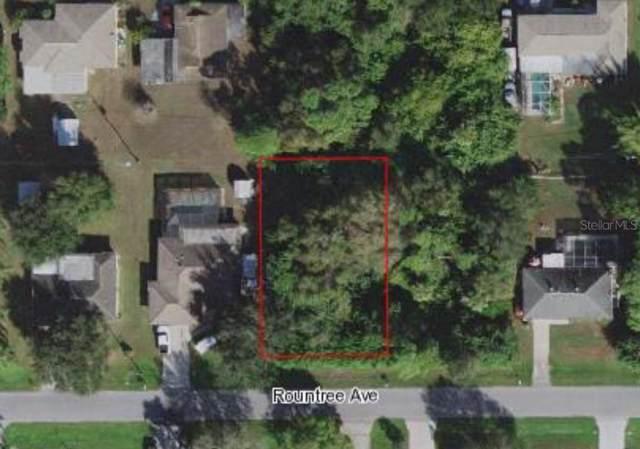 23144 Rountree Avenue, Port Charlotte, FL 33980 (MLS #D6108978) :: Florida Real Estate Sellers at Keller Williams Realty