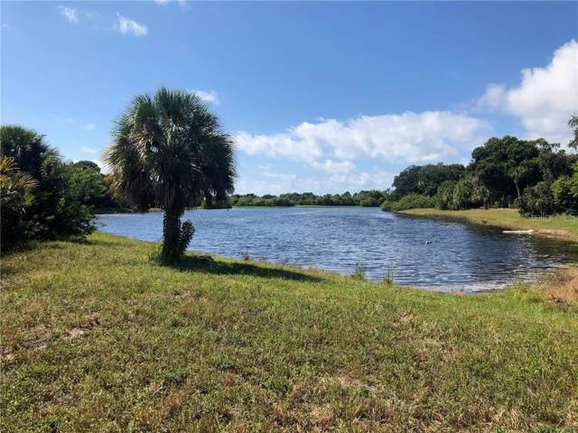 160 Blue Road, Rotonda West, FL 33947 (MLS #D6109064) :: McConnell and Associates