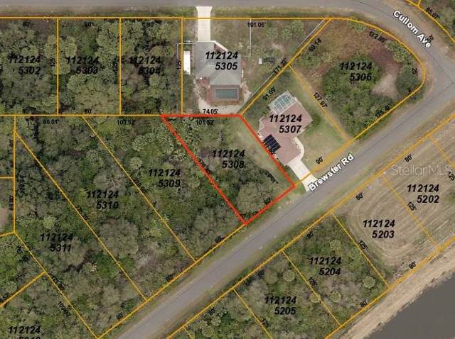 Brewster Road, North Port, FL 34288 (MLS #D6109106) :: Homepride Realty Services