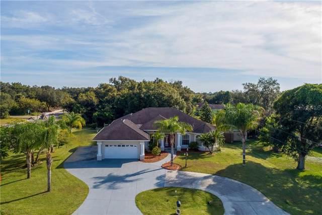 22193 Hallstead Avenue, Port Charlotte, FL 33952 (MLS #D6109801) :: The Robertson Real Estate Group