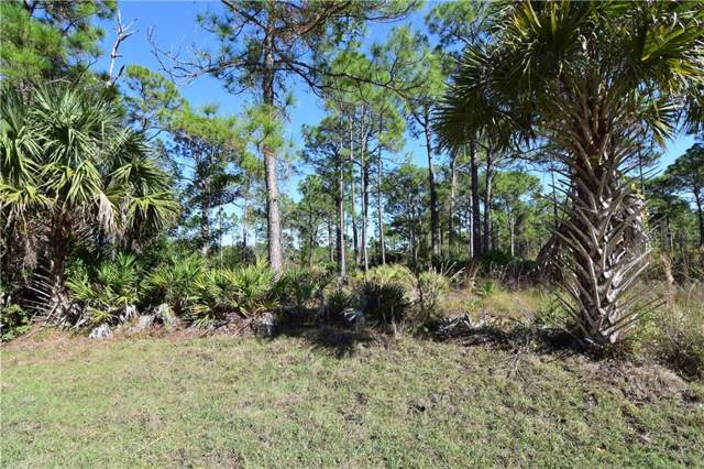 13350 Wedgewood Drive, Punta Gorda, FL 33955 (MLS #D6110273) :: Bustamante Real Estate