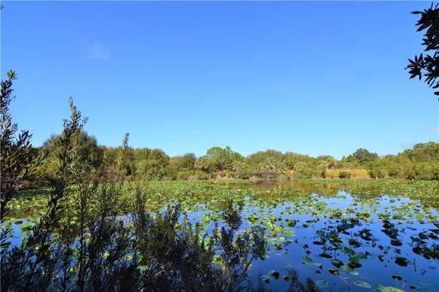 13453 Carnauba Drive, Punta Gorda, FL 33955 (MLS #D6110279) :: Bustamante Real Estate
