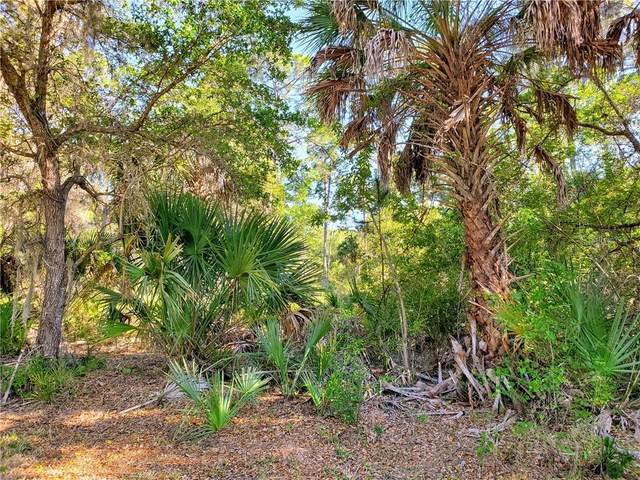 18265 Garman Avenue, Port Charlotte, FL 33948 (MLS #D6111764) :: Sarasota Home Specialists