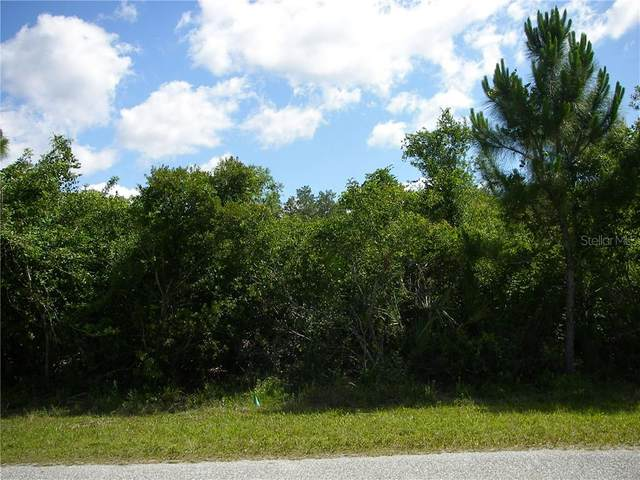14112 Monserrate Lane, Port Charlotte, FL 33981 (MLS #D6112077) :: Cartwright Realty