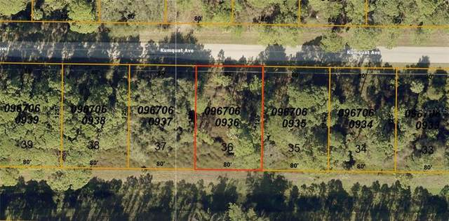 Lot 36 Kumquat Avenue, North Port, FL 34291 (MLS #D6113007) :: Bustamante Real Estate