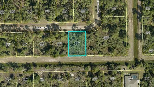 1222 Raphia (Lot 9) Street E, Lehigh Acres, FL 33974 (MLS #D6113033) :: Rabell Realty Group
