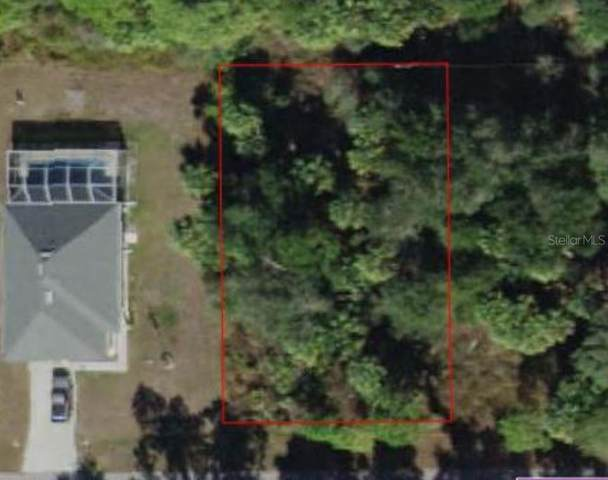 20232 Renwick Avenue, Port Charlotte, FL 33954 (MLS #D6113438) :: Bustamante Real Estate