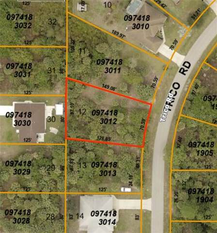 Trico Road, North Port, FL 34287 (MLS #D6113617) :: Bustamante Real Estate