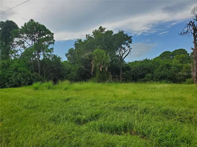 181 W Pine Valley Lane, Rotonda West, FL 33947 (MLS #D6113745) :: Zarghami Group