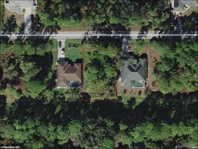 Bellefonte Avenue, North Port, FL 34286 (MLS #D6113908) :: Rabell Realty Group
