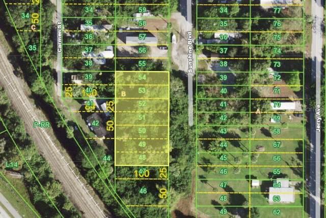 2659 Sunshine Boulevard, Punta Gorda, FL 33950 (MLS #D6114060) :: Rabell Realty Group