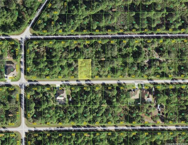 14120 Banos Avenue, Port Charlotte, FL 33981 (MLS #D6114145) :: Rabell Realty Group