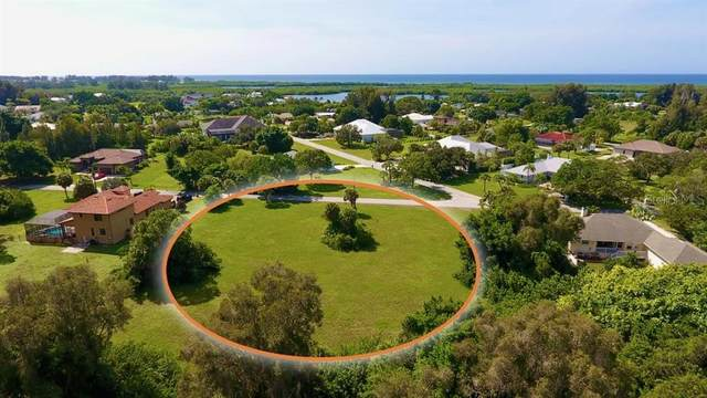 70 Spaniards Road, Placida, FL 33946 (MLS #D6114740) :: Pepine Realty